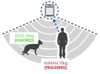 pet-friendly-alarm-sensors-home-security-keybury