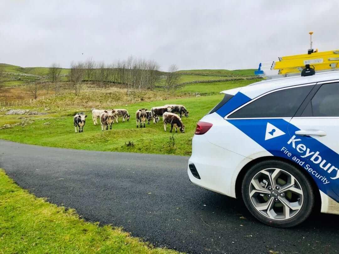 keybury lamb cam cctv