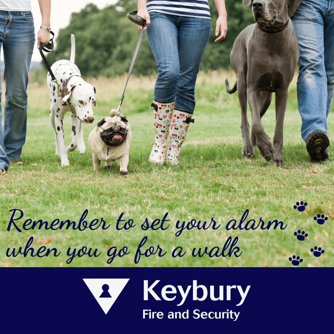 set your pet friendly alarm