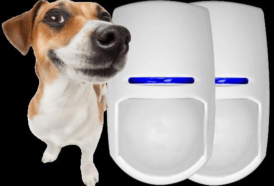 pet friendly alarm ssytems